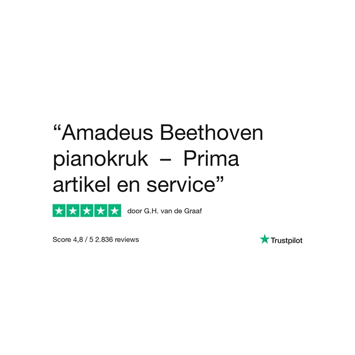 Amadeus Beethovenbank Elise PE (skai zitting)