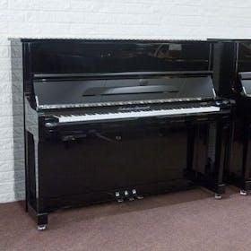 Sebastian Steinwald 121 (Korg KS-30) PE zilver silent piano