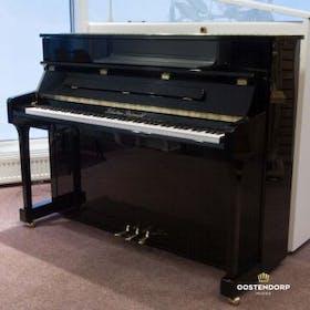 Sebastian Steinwald 110 met hele klep PE messing piano