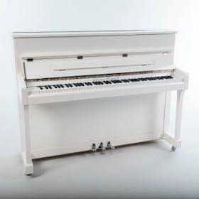 Sebastian Steinwald Piano Wit Zilver